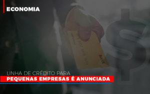 Linha De Credito Para Pequenas Para Pequenas Empresas E Anunciada - Contabilidade em Presidente Epitácio - SP | ERS Contabilidade