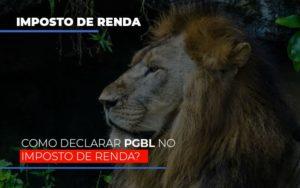 Ir2020:como Declarar Pgbl No Imposto De Renda - Contabilidade em Presidente Epitácio - SP | ERS Contabilidade